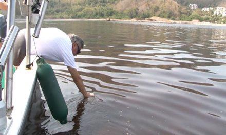 Marea roja tóxica en la costa de Colima