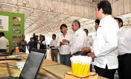 Participa la Universidad de Colima en Feria Profesiográfica 2018