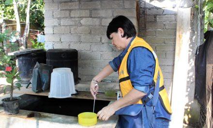Continúan acciones de prevención contra dengue, zika y chikungunya