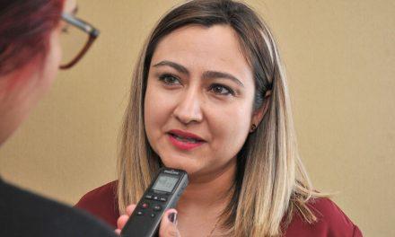 Nutrida participación de aspirantes a integrar los Consejos municipales electorales: Nirvana Rosales