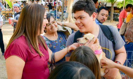 Ayuntamiento capitalino invita a Feria de Adopción Canina y Felina este domingo