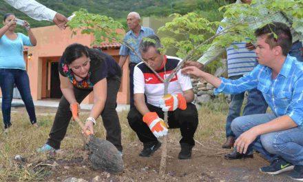 En campaña de reforestación gobierno  estatal busca plantar mil 800 arbolitos