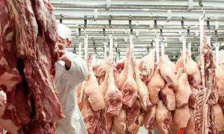 Actualizan a personal de rastros para  garantizar consumo de carne segura