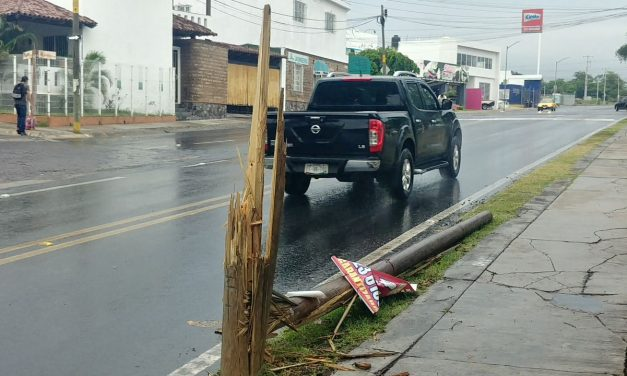 Tiene una semana poste de madera derribado en Prolongación Hidalgo esquina Flor Rosa Morada