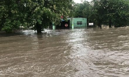 PC Estatal:39 árboles caídos e inundaciones,saldo de la tormenta de este lunes
