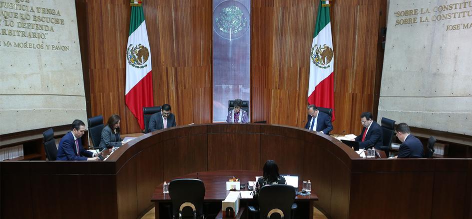 Restituye la Sala Superior del TEPJF las diputaciones pluris al PANAL y al PVEM