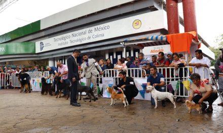 Desarrollan encuentro de belleza canina  en el Domo Central de la Feria de Colima