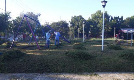 Trabajo Intenso de Limpieza y Alumbrado en Colonias: Felipe Cruz