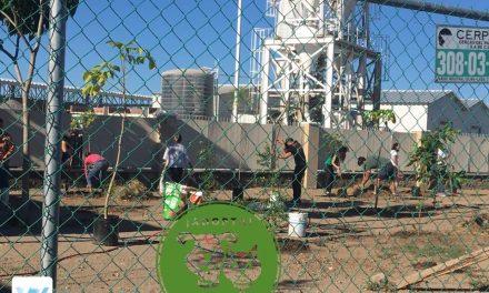 """Colectivo """"Sonrisas de Pelos"""" Planta Árboles y Coloca Mallasombra en Centro de Control Canino de Villa De Álvarez"""