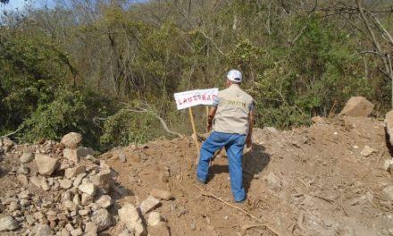 CLAUSURA PROFEPA TERRENOS FORESTALES POR CONSTRUCCIÓN DE PATIO DE CONTENEDORES SIN AUTORIZACIÓN, EN COLIMA