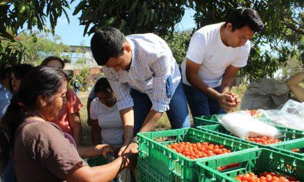 Programa Aliadas lleva apoyos a 35 familias de Parajes de la Estancia, en el municipio de Colima