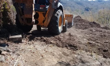 Reparados 25 Kilómetros de Caminos Sacacosechas en las Comunidades: Felipe Cruz