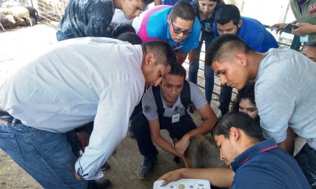Imparten talleres de actualización sobre rumiantes, en Tecomán