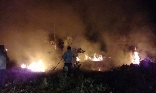 En Manzanillo, ni Ayuntamiento, ni CAPDAM apoyaron para combatir incendio: Martha Meza O.