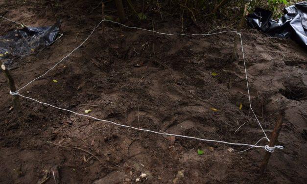 Extraoficial: Localizan otras fosas clandestinas en Cofradía de Juárez, en Tecomán