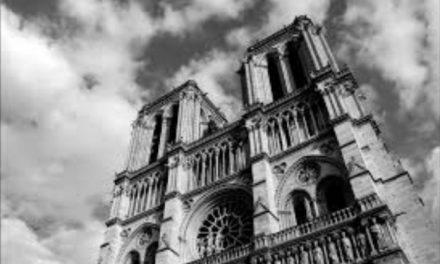 """""""Notre Dame"""" debería renacer como """"Notre Mère"""""""