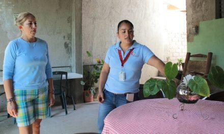 Aedes aegypti, un riesgo para la salud que se puede prevenir