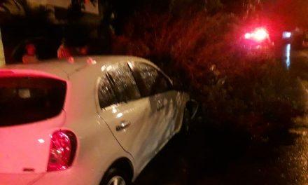 Dieciséis vehículos afectados y ocho árboles caídos, por la lluvia de este viernes: PC
