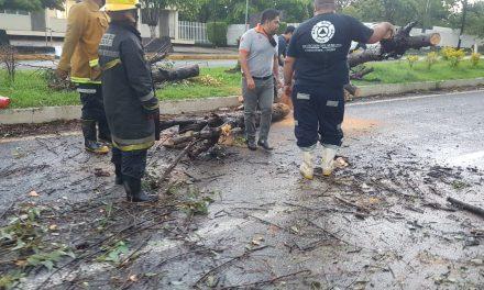 De 6.5% el aumento salarial al personal de Protección Civil y Bomberos de Cuauhtémoc