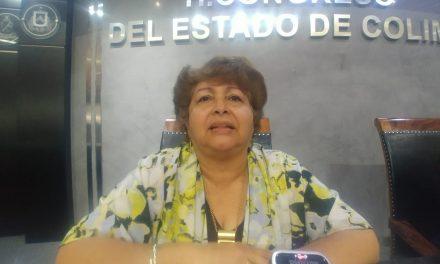Diputada Martha Meza, pide a las autoridades brindar vigilancia preventiva a los centros para adictos