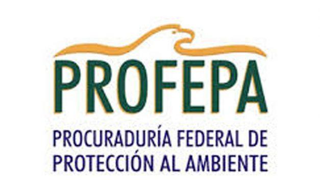 Por quinta ocasión, entrega Profepa Certificado Ambiental a empresa Ingenio Quesería