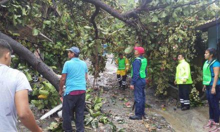 "Pese a la emergencia, saldo blanco en Manzanillo tras paso de ""Lorena"": PC"