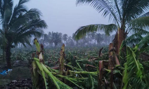 Se publicó en el Diario Oficial de la Federación la declaratoria de desastre para 4 municipios de Colima