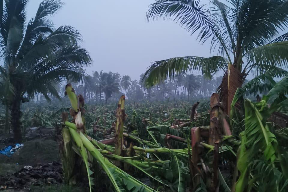 SEDER entrega apoyos a productores afectados por lluvias