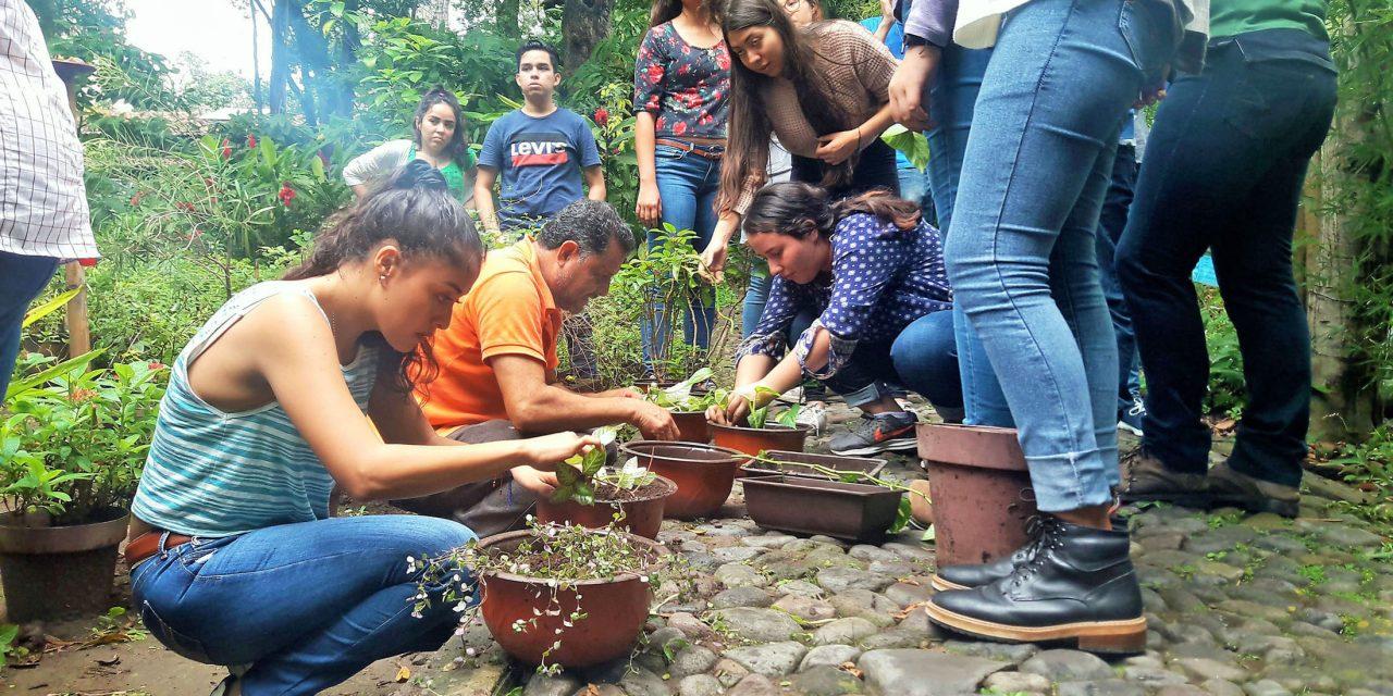 Imparten taller de poda y reproducción de plantas