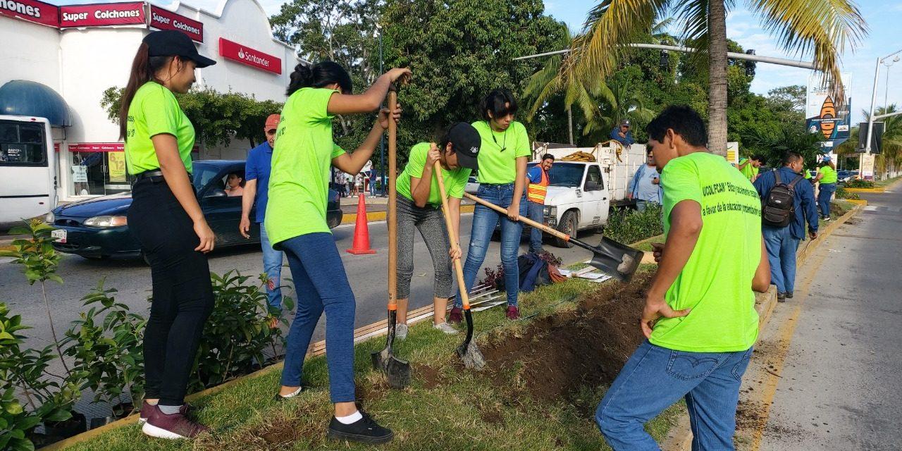 UdeC y Ayuntamiento Manzanillo, realizan brigada de impacto vial; reforestan el camellón central entre Plaza Manzanillo y Walmart