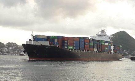 Vigilan 25 barcos provenientes de Asia para evitar enfermedades emergentes