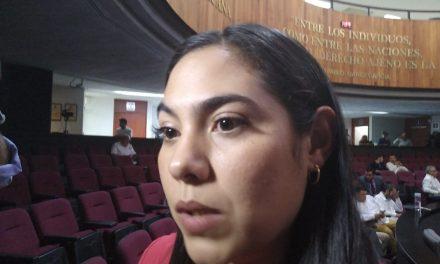 Se ha duplicado la violencia intrafamiliar en el Estado de Colima: Indira Vizcaíno