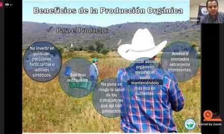 El futuro de la agricultura es la certificación orgánica: Experto