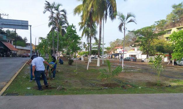 Embellece Ayuntamiento de Manzanillo espacios públicos de El Tajo