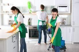 Estadísticas a propósito del Día Internacional del Trabajo Doméstico