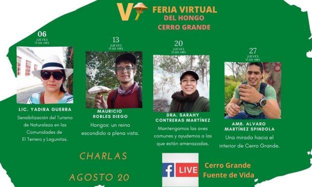 Feria Regional de los Hongos de Cerro Grande se llevará a cabo de manera virtual